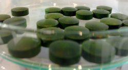 chlorella-jest-bogata-w-witamine-b12
